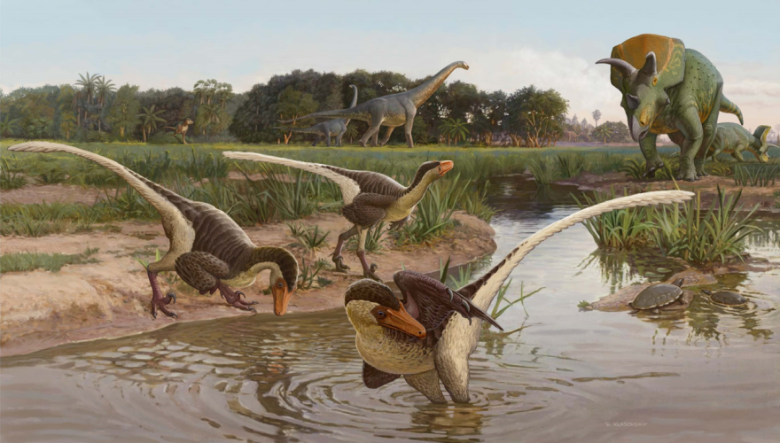 Illustration of dinosaurs at a watering hole.