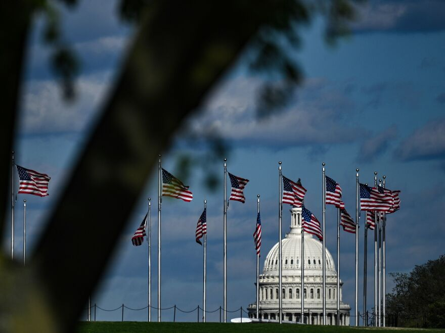 The dome of the U.S. Capitol building is seen behind a row of U.S. flags.