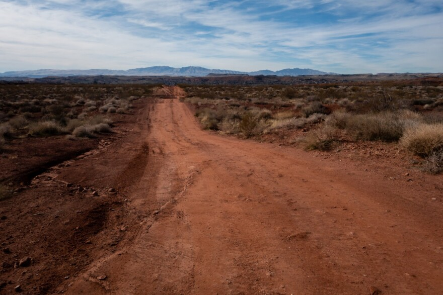 A dirt road cuts through the grassy, desert lands in Washington County.
