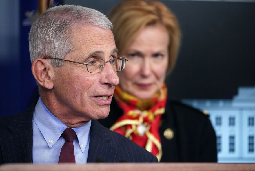 Director of the National Institute of Allergy and Infectious Diseases Dr. Anthony Fauci, left, speaks as Response coordinator for White House Coronavirus Task Force Dr. Deborah Birx looks on during the daily briefing on the novel coronavirus, COVID-19,  at the White House in March.