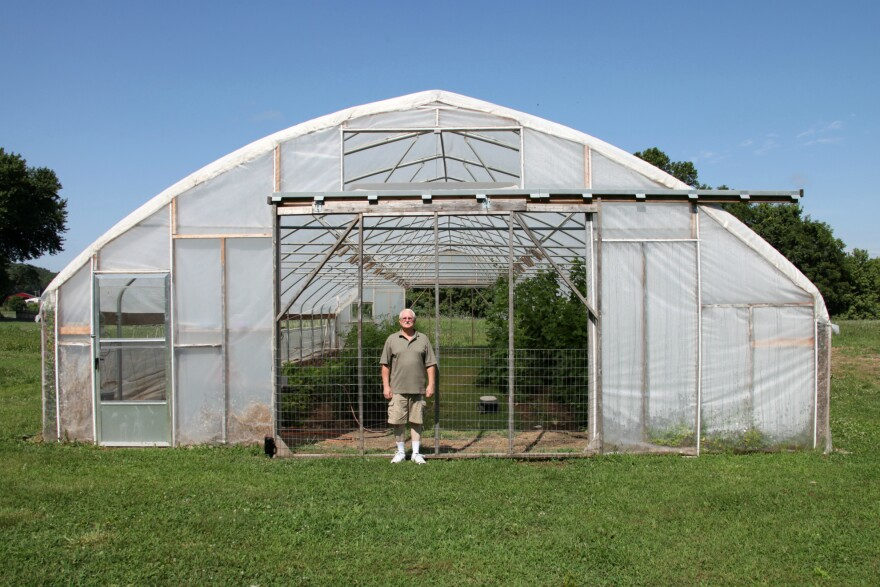 Central Missouri farmer Gary Wenig plans to plant trap crops around his high tunnel in an effort to stop pests from eating his produce.