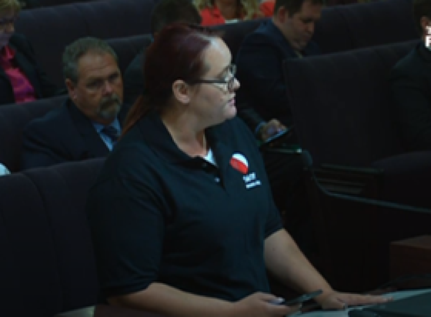 Christine Caine appears before the Senate Community Affairs Committee to speak out against Senate Bill 540.