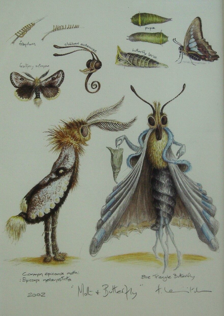 In the couple's suburban Maryland home is this artwork, a wedding present, of a moth courting a butterfly.