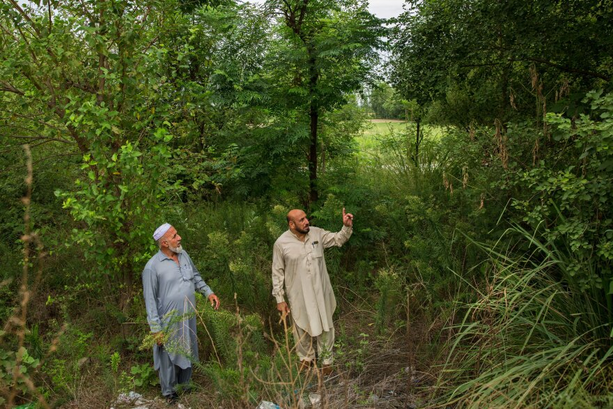 Shahroom Badshah (right) and and Bakhtiar Ali, show a plantation under the government's ambitious 10-billion tree initiative along the Col Sher interchange on the highway in Mardan.