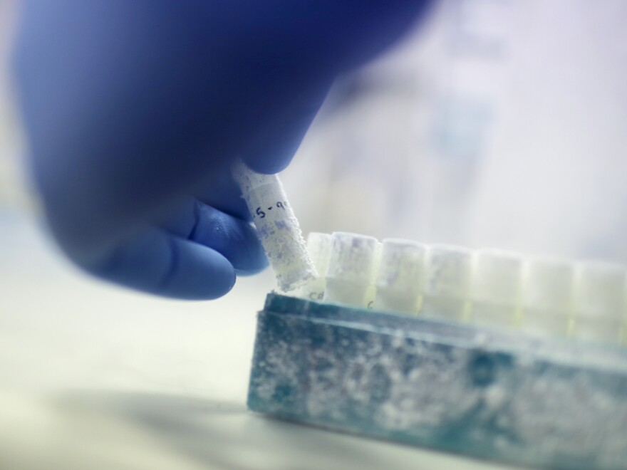 """The now-divorced couple is trying to find out what happened to Drew Wasilewski's once-frozen sperm. """"They took it and it was defrosted. If they didn't use it for this procedure they must have used it in some other procedure,"""" attorney David Mazie told NPR."""