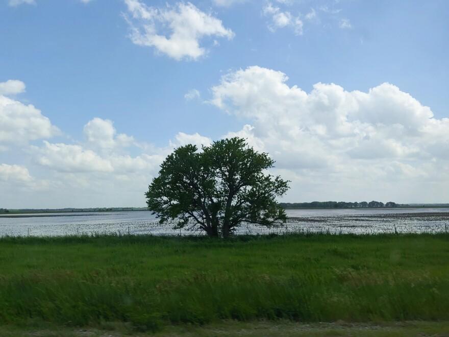 052719-smg-flooding.jpg