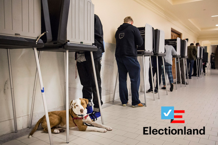 electiondogvoter_0.png