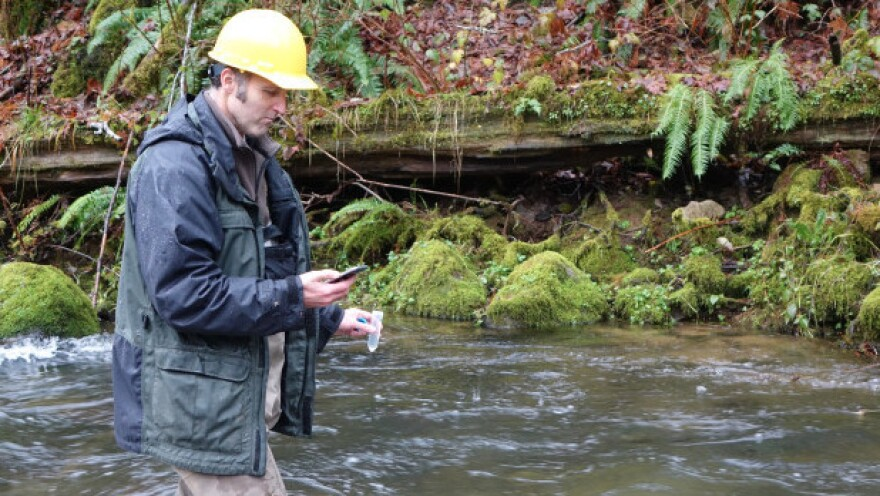 Biologist Shaun Clements counts down the seconds before emptying a vial of synthetic DNA into a stream near Alsea, Oregon.