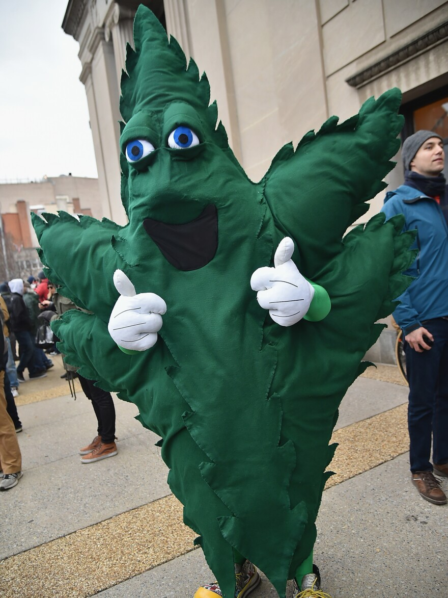 A demonstrator at a marijuana legalization rally in Washington, D.C., on Inauguration Day 2017.