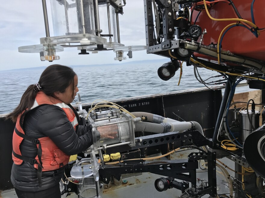 Marine biologist Anela Choy was lead scientist with the team researching microplastics on the research vessel Rachel Carson.