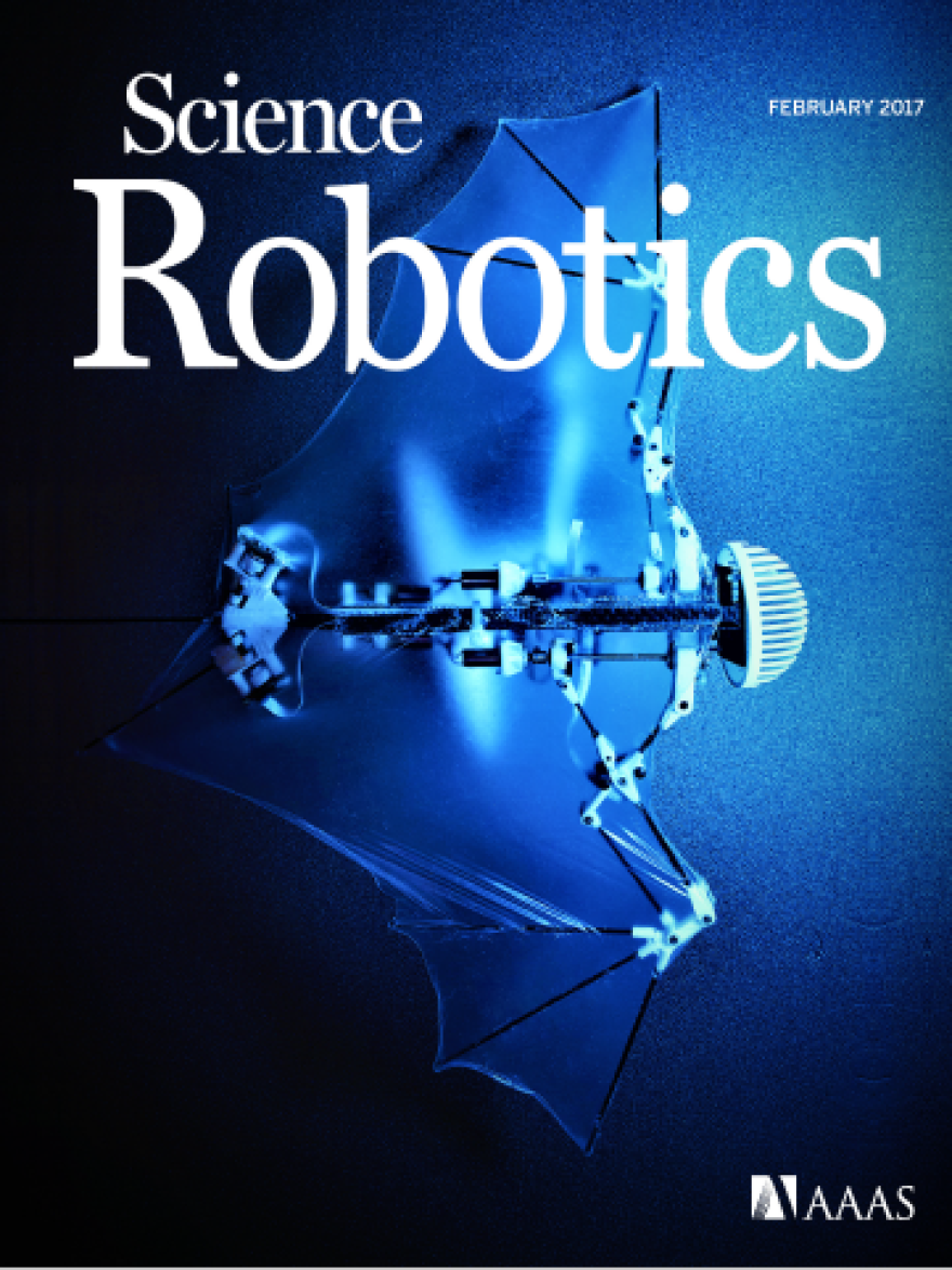 The cover of <em>Science Robotics</em> featuring an image of the 'Bat Bot' flying robot.