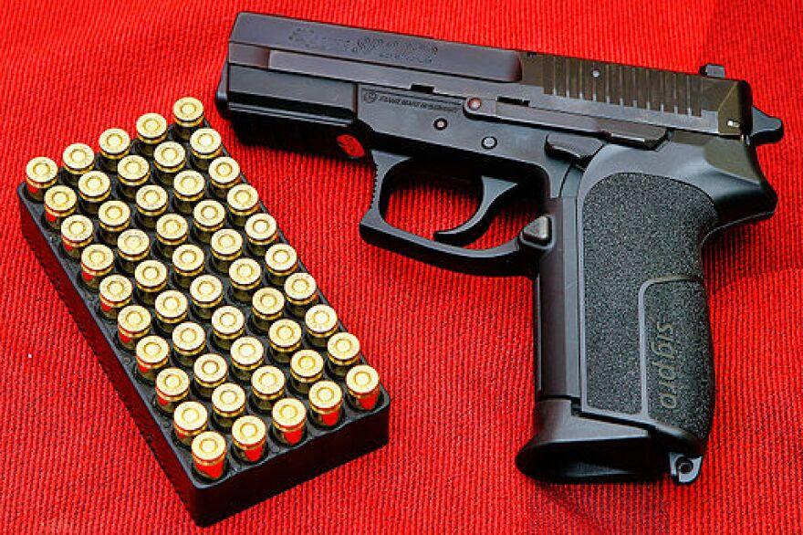 gun_-_sig_semi_automatic.jpg