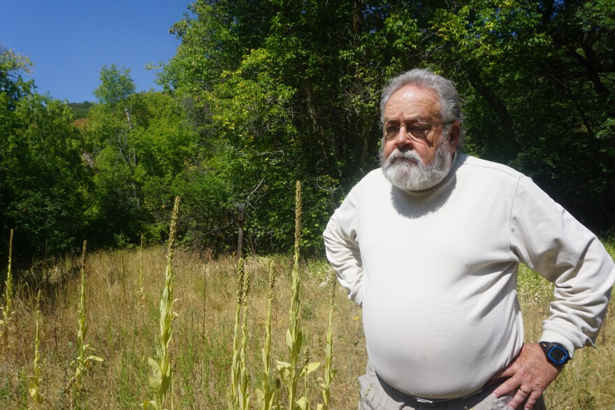 Pat Shea stands in a meadow in Red Butte Canyon