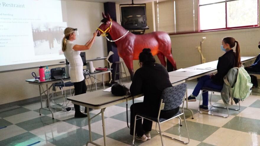 Veterinary Technology Apprentice Program class at Community College of Denver