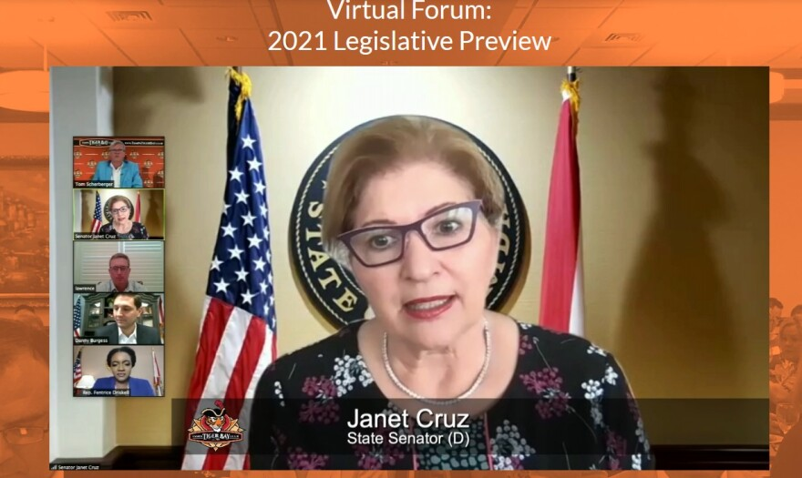 State Sen. Janet Cruz on a webinar