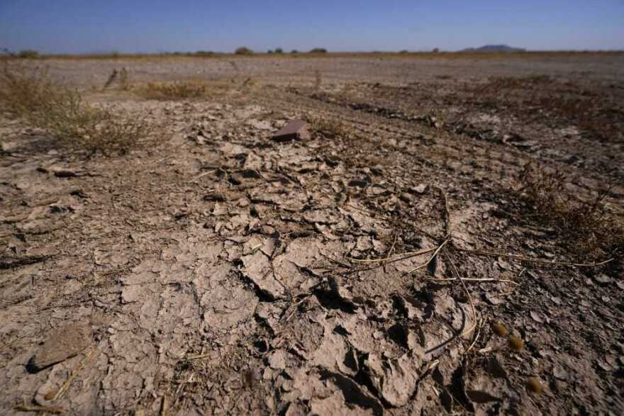 Dry desert soil cracks due to the lack of monsoon rainfall could be seen in Maricopa, Arizona.