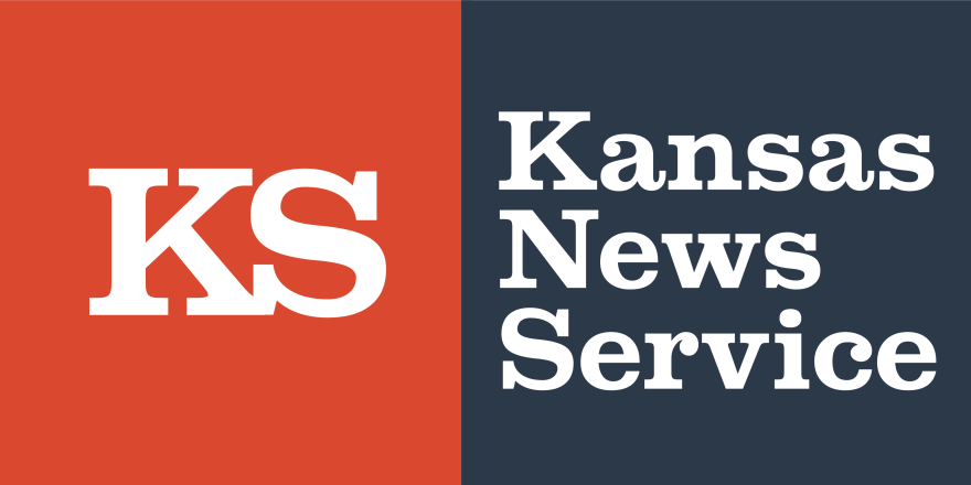 KNS_logo_web_horiz.png