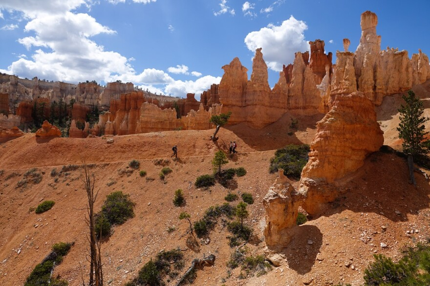 A photo of hoodoos and banded, multi-color canyon walls in Bryce Canyon National Park.