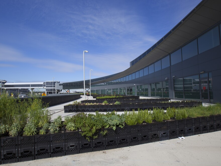Away from the airplanes and runway at Terminal 5, JetBlue says its garden isn't at risk for pollution from jet fuel or emissions.