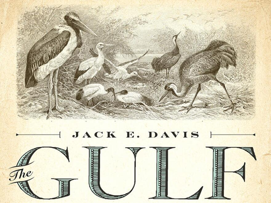Jack E. Davis is author of the Pulitzer Prize-winning book The Gulf: The Making of An American Sea.