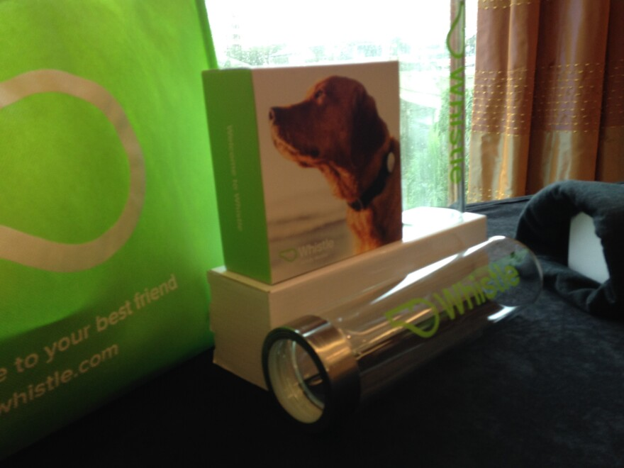 A JawboneUP fitness monitor connects to a device on a dog collar, called Whistle, and tracks the owners' steps.