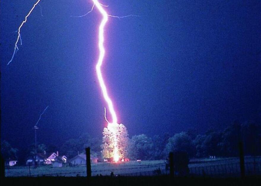 Lightning_hits_tree_cropped.jpg