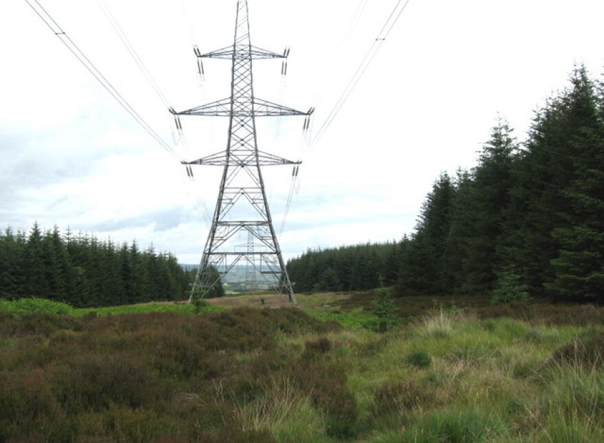 Power_lines_through_the_forest_Thrunton_Woods_-_geograph.org_.uk_-_865935.jpg
