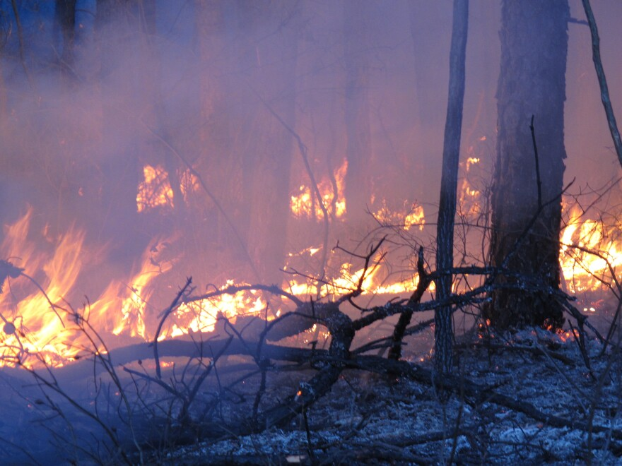 Winter is peak time for prescribed burns, deliberately set fires designed to eliminate leaves and other flammable material that could fuel a larger forest fire. But the partial government shutdown is interfering with this and other preparations for the fire season.