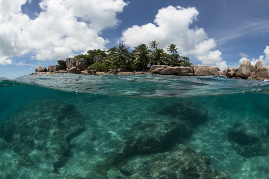 The tiny island nation of the Seychelles is announcing a pioneering marine conservation plan as part of a debt swap deal with creditors, designating nearly a third of its ocean waters as protected areas and aiming to ensure its unique biodiversity.