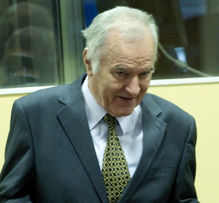 Former Bosnian Serb Gen. Ratko Mladic at the International Criminal Tribunal for the former Yugoslavia (ICTY) in The Hague earlier today.