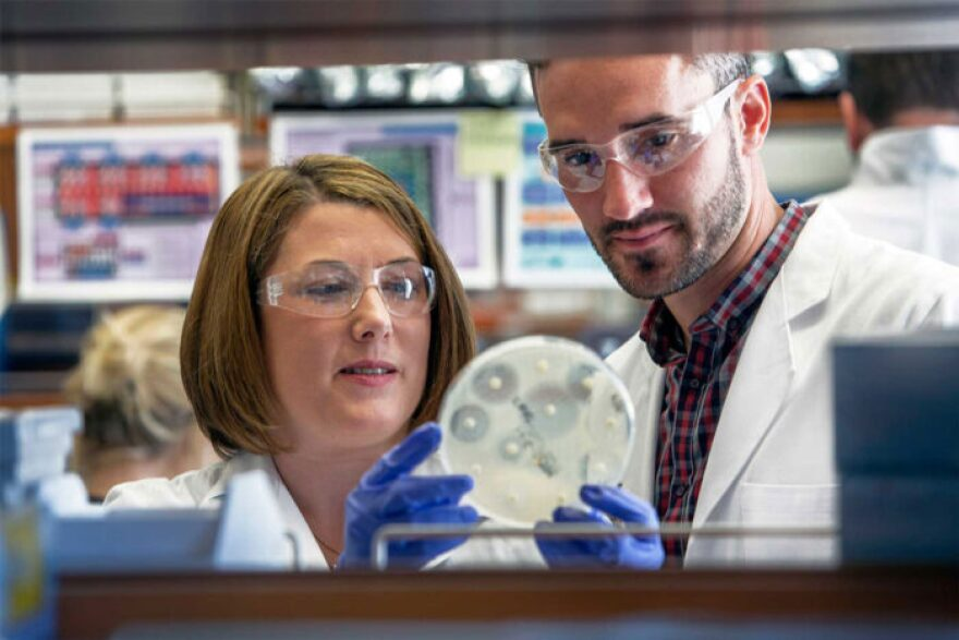 Stephanie Fritz, left, and Patrick Hogan examine a bacterial sample. The pair were part of a team investigating transmission of staph bacteria among family members in the home.