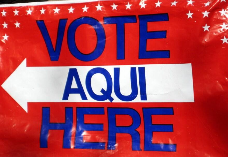 1-voting 2010 008.jpg