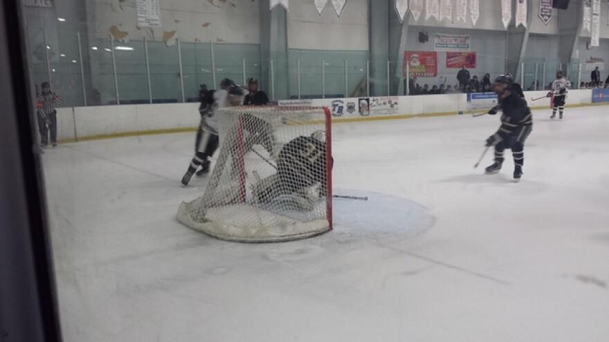 UB_14-02_USF_Hockey_4m.jpg