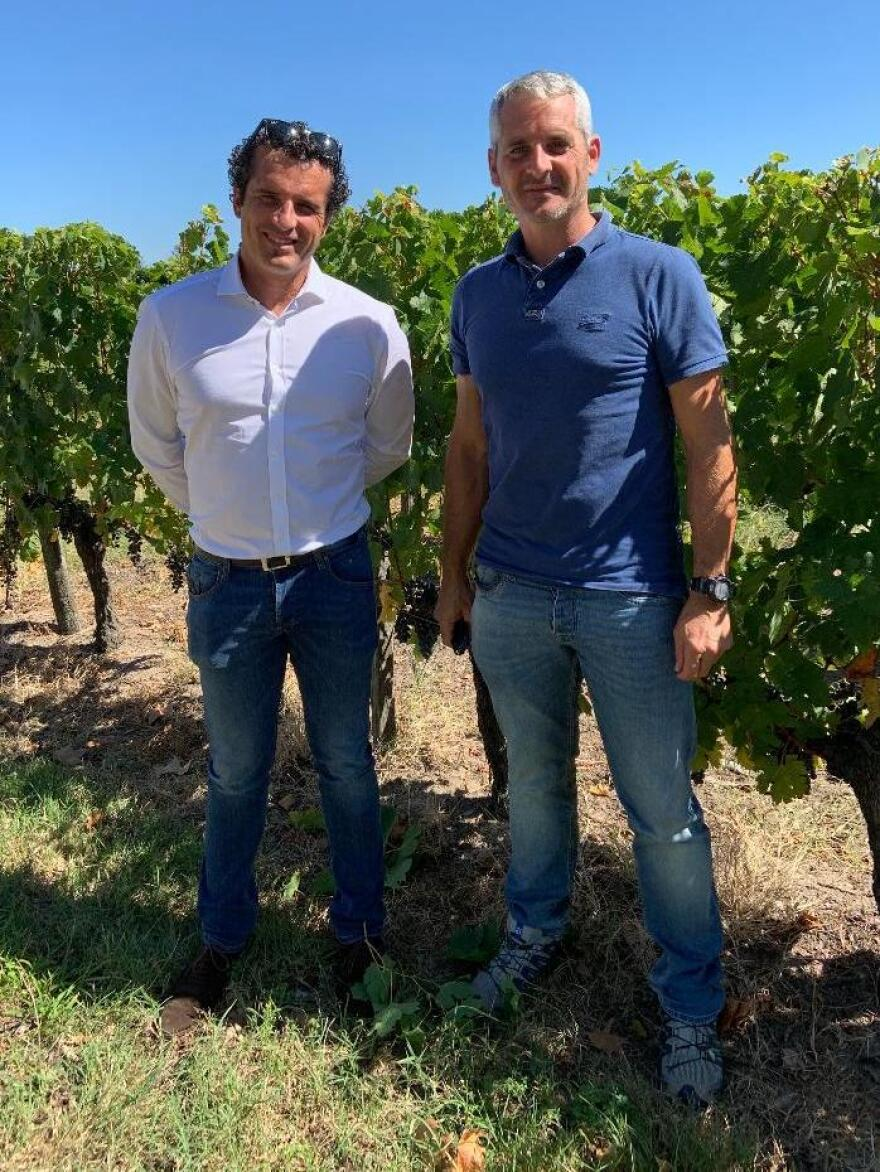 Brothers Gregoire (left) and Remi Couppé are fourth-generation winemakers. Remi Couppé says hotter and drier weather has changed the way they have to harvest grapes.