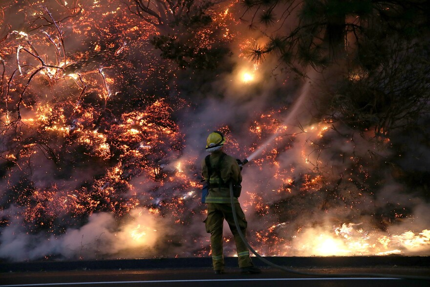 A firefighter uses a hose to douse the flames of the Rim Fire on Saturday near Groveland, California.