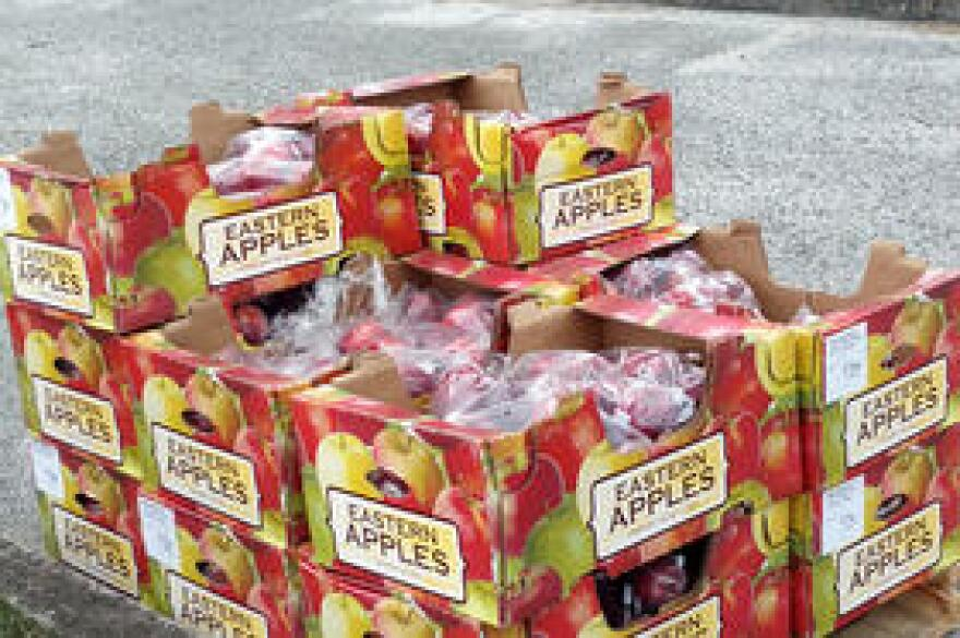 Volunteers and staffers from Feeding Tampa Bay handed out fresh apples to food recipients at Tampa's Foster Elementary School.
