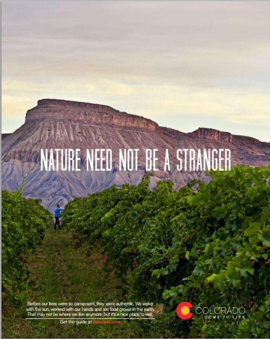 nature_stranger.JPG
