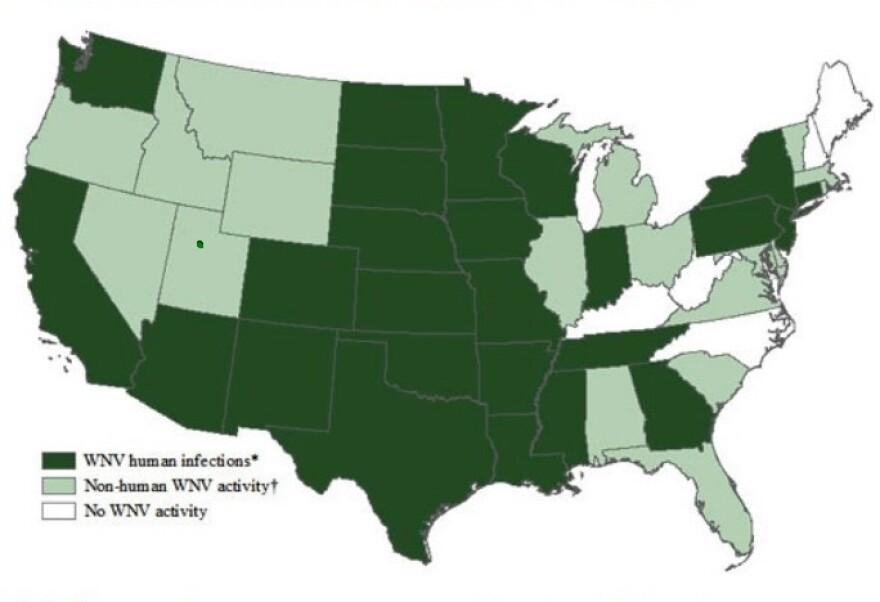 USA_Chart_8_19.jpg