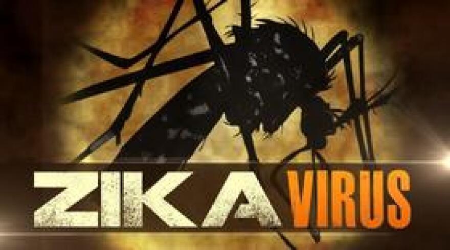 ZikaVirusMGN0415.jpg
