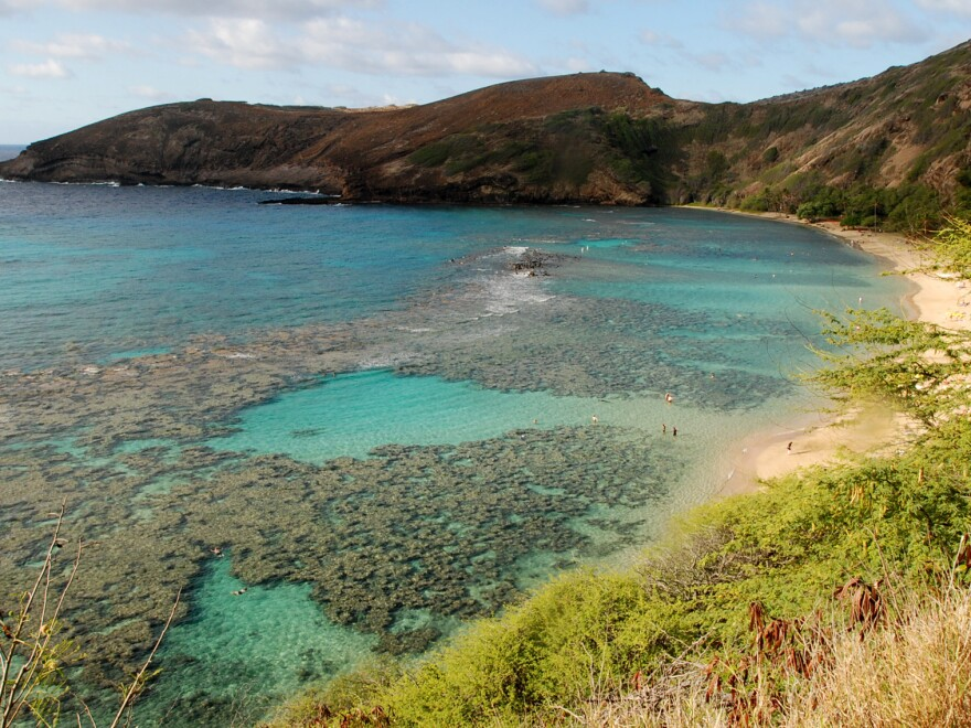 Much of the inner reef at Oahu's Hanauma Bay is dead after decades of tourism. The state may sign a law banning over-the-counter sunscreens believed to harm coral.