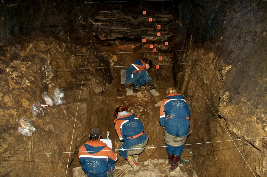 Some 2,000 bones — some animal, some ancient human — were found in the Denisova Cave.