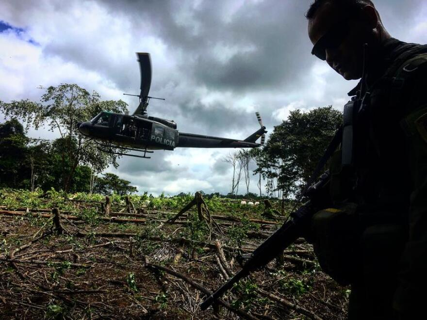 A Colombian anti-narcotics police captain leading a coca-destruction mission in southwest Colombia.