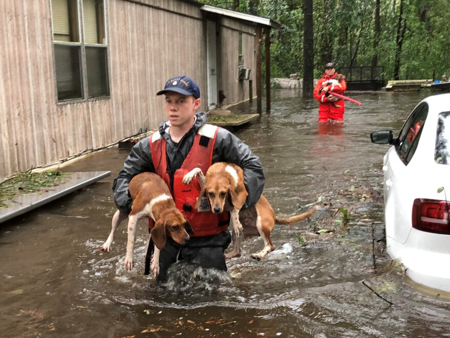 Members of Coast Guard Shallow-Water Response Boat Team 3 help pets stranded by floodwater near Riegelwood, N.C., on Sunday.