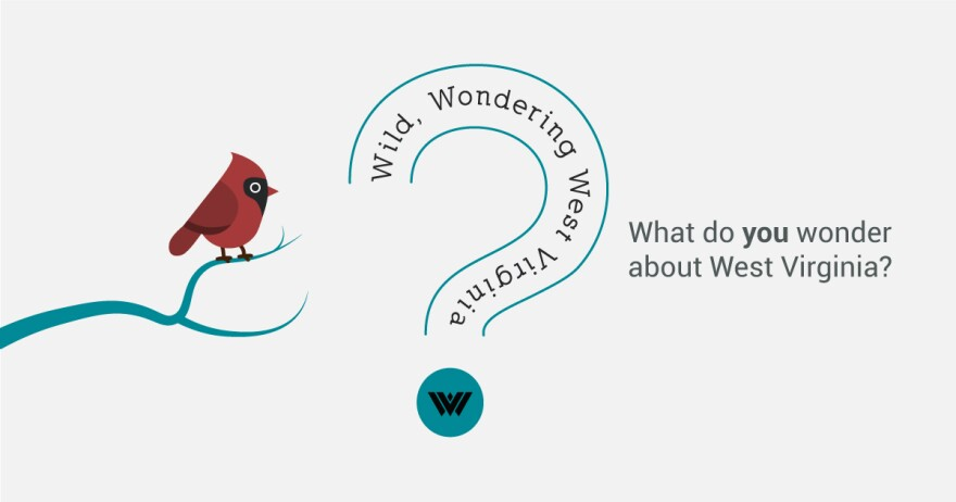 Wild, Wondering West Virginia - What you YOU wonder about West Virginia?