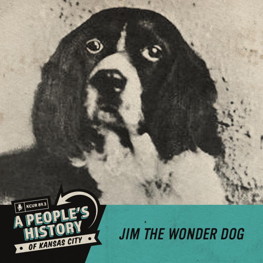042920_7 PeoplesHistoryofKC_Jim The Wonder Dog_Historic Photo.png