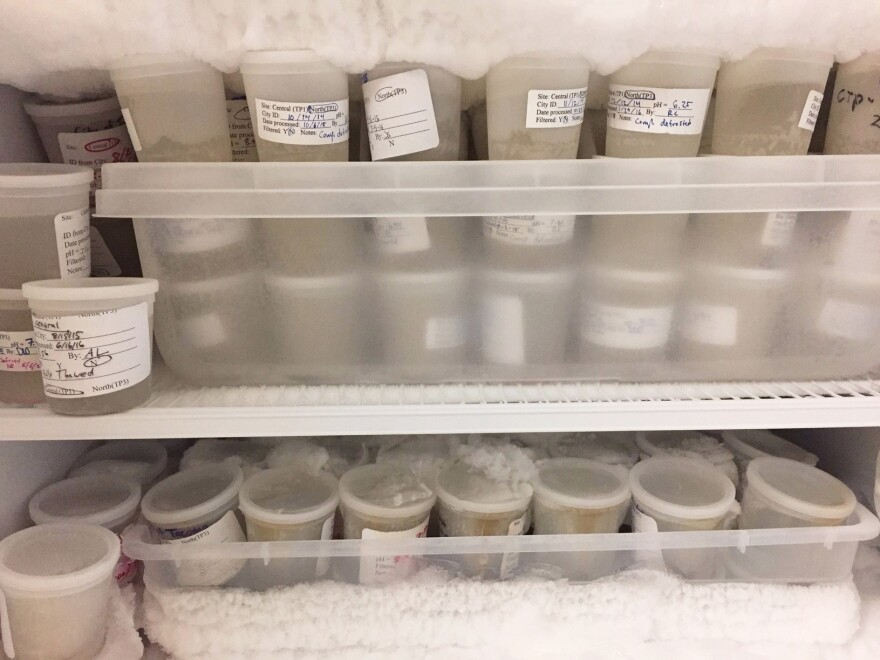 University of Puget Sound chemist Dan Burgard keeps a freezer full of archived samples from two wastewater treatment plants in western Washington in case he needs to rerun the samples or analyze a specific drug he didn't test for the first time.