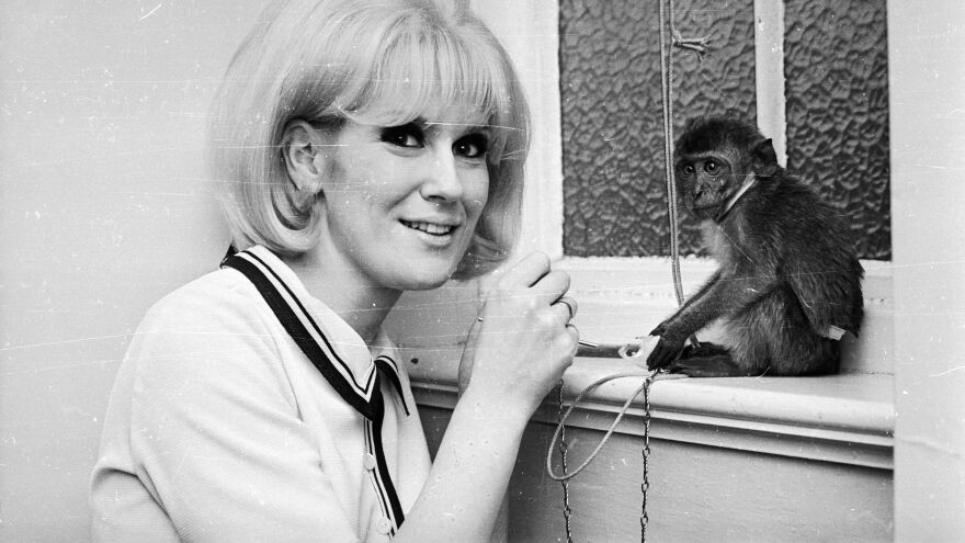 """Son of a Preacher Man"" was Dusty Springfield's debut on Atlantic. The entire album that spawned it, <em>Dusty in Memphis</em>, was recorded at American Studios."