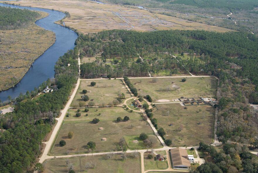 white_oak_conservation_near_georgia_florida_border_michaelstone428_wikimedia_2009.jpg