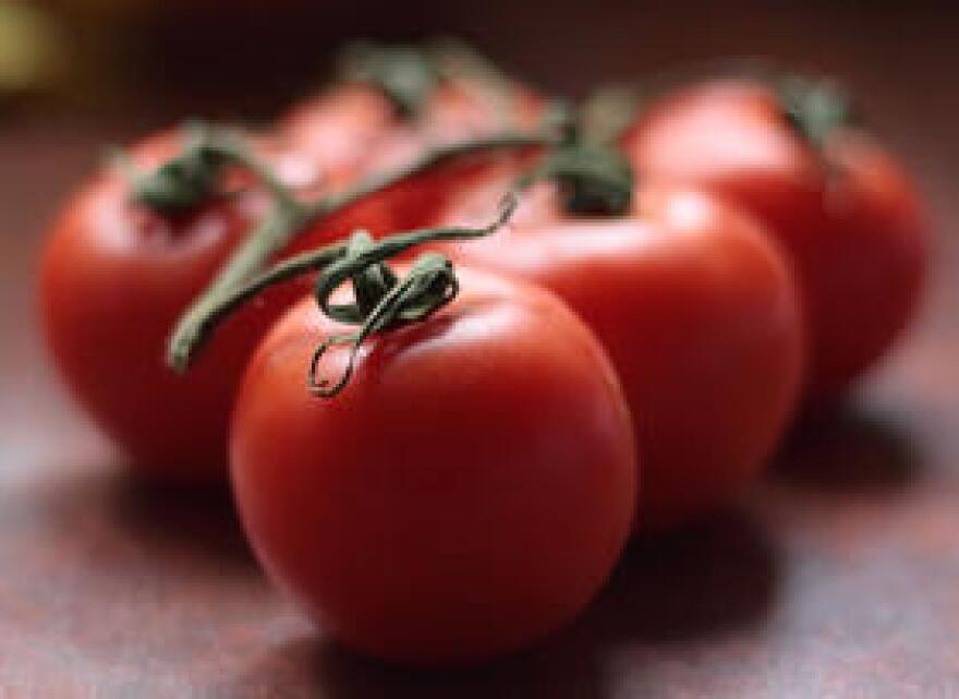 tomato_sean_hickin_flickr.jpg