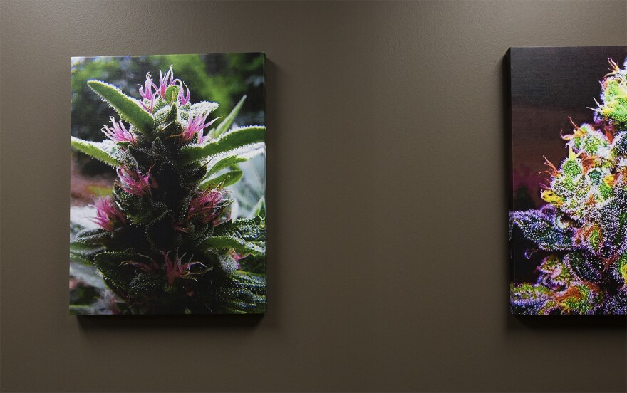 Colorful photographs hang in the lobby at HCI Alternatives, a dispensary in Collinsville. (June 14, 2017)
